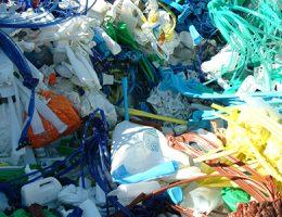 Dimensiones de género en el manejo de los residuos sólidos en áreas urbanas y periurbanas