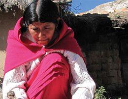 Entre el Ideal de estabilidad laboral y el sueño del negocio propio | Bolivia