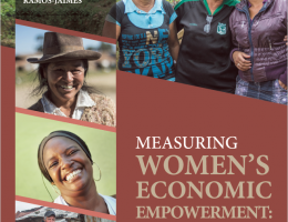 Measuring Women's Empowerment: Critical Lessons from South America